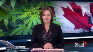 What's slowing Canada's plan to legalize marijuana?