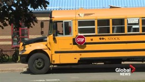 More school buses coming to Halifax Regional Municipality