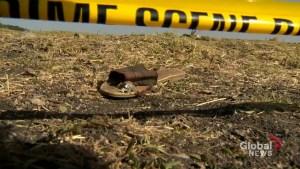 America joins investigation into Ethiopian Airlines crash