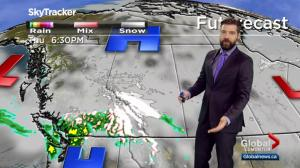 Edmonton Weather Forecast: Nov. 13