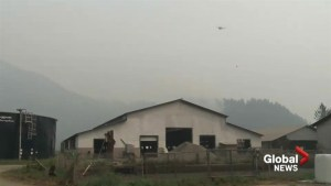 Mount Hicks fire threatens farmers