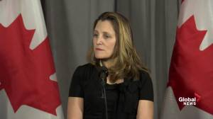 Canada 'concerned' about Saudi man who went missing after embassy posted bail: Freeland