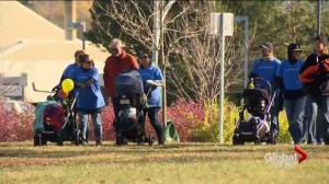 Saskatoon families walk for perinatal loss awareness
