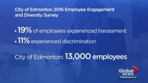 City of Edmonton employee survey finds harassment, bullying in the workplace