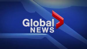 Global News Hour at 6 Edmonton: Nov 12