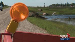 Landowner near Leduc blames CP Rail for flooded property