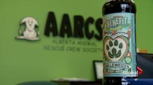 Dunkleweizen brew to help Milk River dogs