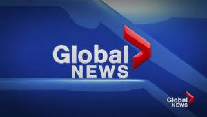 Global News at 5: Lethbridge August 15