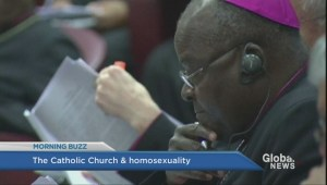 Catholic Church stuns world with change in homosexuality stance