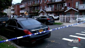 Woman stabs 5 people including 3 infants in Queens, New York