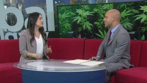 Calgary veterinarian shares signs your dog may have ingested cannabis