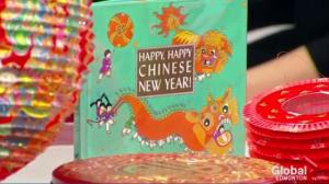 Chinese New Year at the Muttart Conservatory