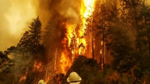Wildfires in northern California continue to rage as Delta fire emerges as immediate challenge