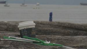 Questions about federal ban on single-use plastics