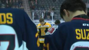 Kingston residents and organizations reach out to support victims and families of people killed in Humboldt tragedy