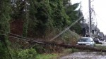 Last months windstorm in BC was one for the record books