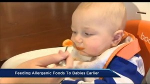 Feeding babies potentially allergenic foods early