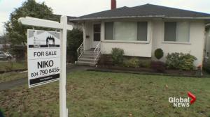 Foreign buyers tax won't affect those who live and work in B.C.