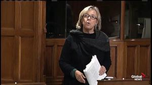 Elizabeth May calls Bill C-51 'The Act to Create a New Secret Police'