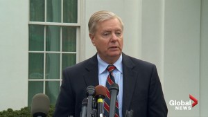Trump promised to 'get job done' with ISIS: Sen. Lindsey Graham