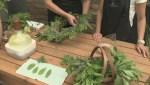 Gardenworks – summer herbs