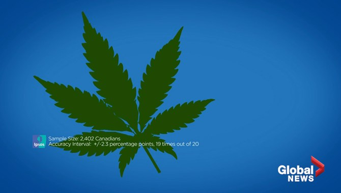 One-third of cannabis buyers still using illicit dealers, according to IPSOS poll