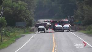 Pedestrian killed by cement truck on Highway 28 in Woodview