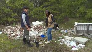 Illegal dumping takes over Kingston property