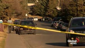 Calgary police on the hunt for suspect in deadly Marlborough shooting