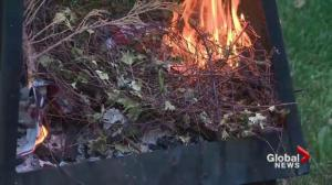 Saskatoon city council tackles fire pit bylaw