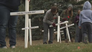 Dedicated volunteers play big role in Calgary's Field of Crosses