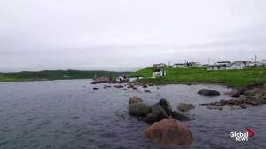 AMA Travel: Explore the wonders of Newfoundland