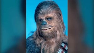 Chewbacca actor Peter Mayhew recovering after surgery