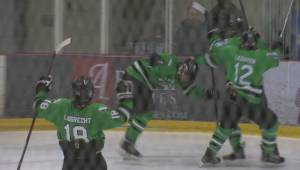 Oak Park Raiders claim high school hockey crown