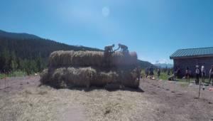 Tough Mudder returns to Whistler