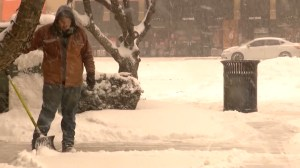 Winter storm hits U.S. cancelling flights as it makes its way northeast