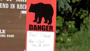 Bear kills teen during mountain race in Alaska