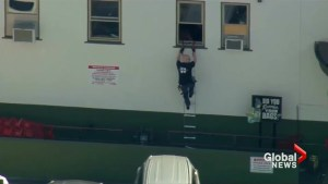 Trader Joe's worker saves people with ladder