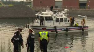 Marine Unit resumes search for vehicle that plunged into Lake Ontario near Sugar Beach