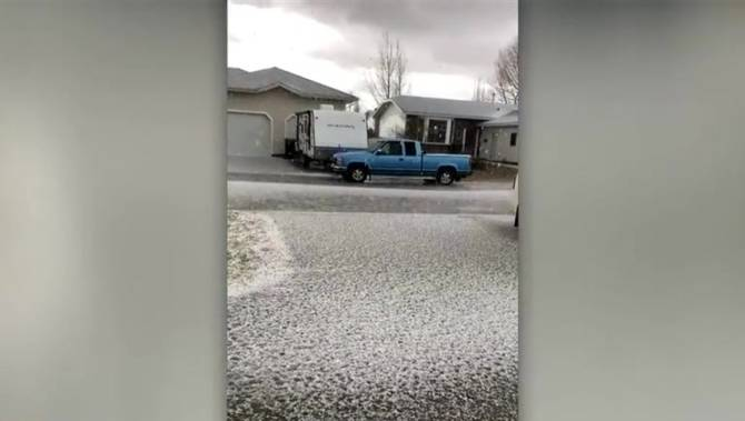Figures show claims mounting as hail hammers Saskatchewan farmers in 2019