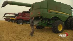 30 per cent of Alberta's crops still waiting to be harvested