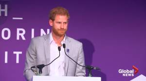 Prince Harry remembers his mother Princess Diana at mentoring summit