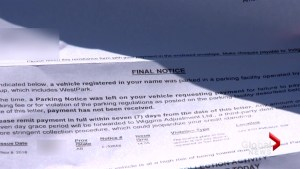 Calgary woman fights ticket issued on private parking lot