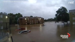 Dramatic time-lapse footage shows just how quickly the floodwaters in Houston rose