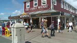 Soaking up the sun: Halifax businesses report boom thanks to warm weather