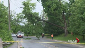 Severe weather causes damage across parts of southern Ontario