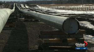 Oil industry leader says stalling on Trans Mountain pipeline project sends bad signal
