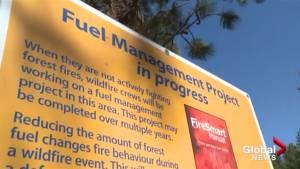 BC Wildfire Service plan week-long fuel burn off near Naramata