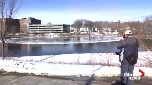 Floating 'ice disk' drawing curious eyeballs to Maine town