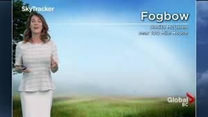 B.C. evening weather forecast: July 16
